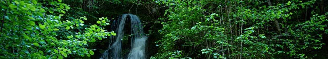 """Descubre la guía """"Excursión con guía Digital: Val de Toran"""""""