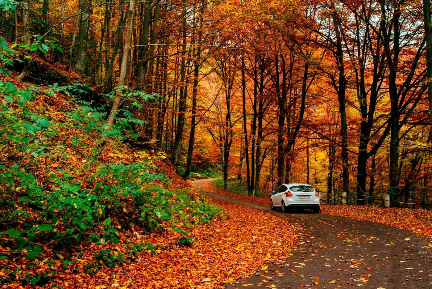 Rutas en coche a sitios impresionantes