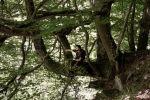 Guía de Parques naturales Valle de Arán que DEBES Visitar