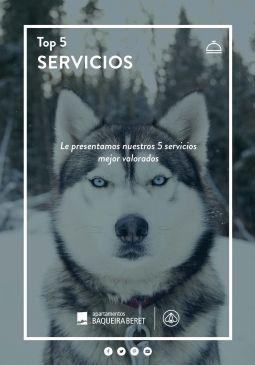 Top 5 Servicios