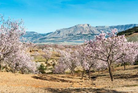 Sierra de Almería. Valle de los Vélez.