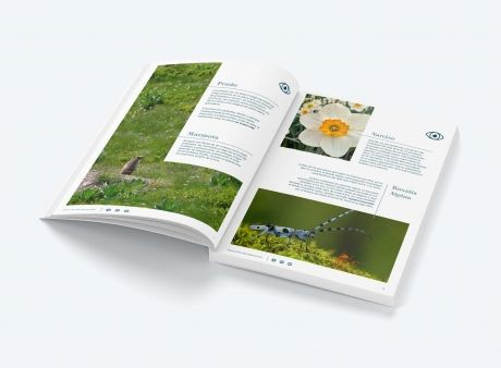 eBook gratis: Fauna y Flora del Valle de Arán by Luderna