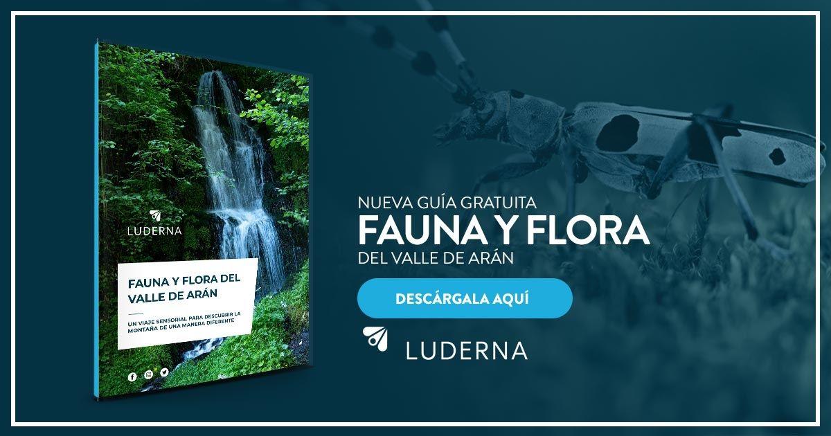 Guía Fauna y flora